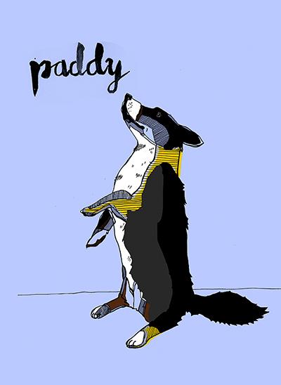 Paddy_01